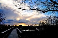 Atardecer (Peideluo) Tags: tree sky cloudscape parquesnacionales landscape clouds pasarela water cielo agua madera árbol anochecer