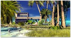 Home (Sivyaleah (Elora)) Tags: scarlet creative oceana house second life sl virtual mesh home landscaping scenic flamingo jian sandpiper tree