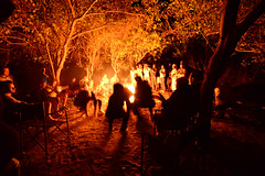 Invoking the Spirit of the Frog (setoboonhong) Tags: outdoor camping safari africa okavango delta botswana campfire frog dance singing dust smoke silhouettes hoping song rangers mokoro drivers night travel