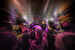 """New Shark Tunnel"" (36D VIEW) Tags: mirrorless a7rii a7rm2 sony 16mm sel1628 aquarium newyork coneyisland"