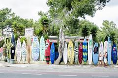 ¿cual eliges? (Verónica Melo Martín) Tags: surf formentera tablas