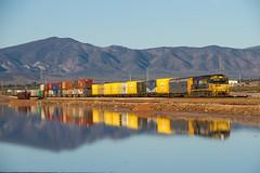 Flinders reflection (Aussie foamer) Tags: nr59 nrclass goninan ugl ge generalelectric nationalrail pacificnational lakeknockout portaugusta southaustralia train railway locomotive rpaunrclass rpaunrclassnr59