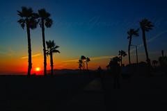 29 (morgan@morgangenser.com) Tags: sunset red orangeyellow blue pretty cloud silhouette sun evening dusk palmtrees bikepath sand beach santamonica pacificpalisades beautiful black dark cement amazing gorgeous inawe ca photobymorgangenser