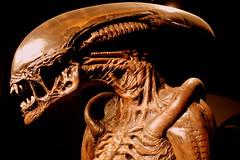 Xenomorph Alien IV (Manuel Negrerie) Tags: xenomorph alien hrgiger creature design endoparasitoid malakak movie scifi photography
