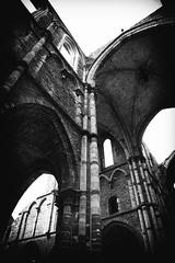 Abbaye de Villers   1 ( γ S  GammaSintesi) Tags: blackandwhite bw monocrome abbayedevillers belgio belgique belgium europa europe abbazia abbaye