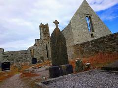 Les ruines de l'abbaye franciscaine à Timoleague (Comté de Cork, Irlande) (bobroy20) Tags: timoleague cork kinsale eire irlande abbaye