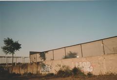 010.jpg (Tai Moura) Tags: kodak film filme 35mm proimage 100 trip100r olympus grafitti streetart street rua olympustrip100r lomo lomography lomografia