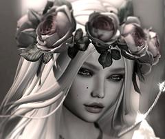 Entre luciérnagas y rosas (Dana Laville) Tags: dana lelutka maitreya larahurley izzies kaithleens lode ikon truth collabor88