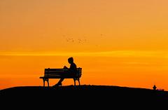 far from everything (poludziber1) Tags: street skyline summer sky silhouette serbia beograd belgrade belgrado orange sunset travel