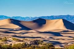 Sand Dunes (bhanugraphy) Tags: nature naturesbeauty deathvalley nevada nationalparksusa sanddunes