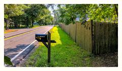 45 HIGHLAND (Timothy Valentine) Tags: 2018 shadow 0818 friday 169 trees road large sunshine fence eastbridgewater massachusetts unitedstates us