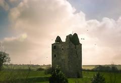 Ireland2017Day3-0099-Edit (Sweetleavins) Tags: ireland green