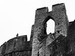 Castell Cas-gwent (Rhisiart Hincks) Tags: bw duagwyn cymru wales chepstow casgwent castell castle ruin adfail blancinegre gwennhadu dubhagusgeal dubhagusbán blackandwhite zuribeltz blancetnoir blackwhite monochrome unlliw blancoynegro zwartwit sortoghvid μαύροκαιάσπρο feketeésfehér juodairbalta