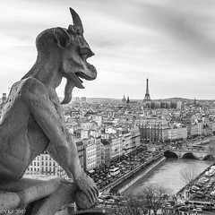 View of Paris from Notre Dame (Yee-Kay Fung) Tags: gargoyle paris