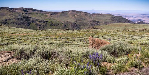 Big Indian Canyon, Steens Mountain Wilderness