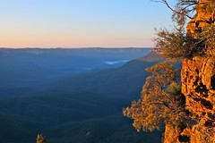 Golden Hour/ Sunrise (adamsgc1) Tags: goldenhour sunrise bluemountains newsouthwales nsw australia nature megalongvalley