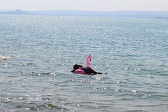 Italy - Part 7 (lucy★photography) Tags: flamingo inflatableflamingo woman sunbathing sun italy summer lake pink chilling relaxing relax floating float