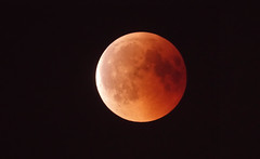 Red moon (eric zijn fotoos) Tags: sonyrx10m3 holland nederland redmoon lucht nacht evening noordholland avond moon maan night bloedmaan sky