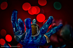 _DSC3978 (Pascal Rey Photographies) Tags: bagues rings ringen bijoux schmuck jewellery gioiello anelli anillos joyas joyeria rouge red rosso rote rojo bleu blue blau azul azzurro pascalrey nikon d700 luminar2018 pascalreyphotographies photographiecontemporaine photos photographie photography photograffik photographiedigitale photographienumérique photographierurale