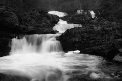 Norwegian nature (steffos1986) Tags: nature landscape blackwhite blackandwhite monochrome water waterfall longexposure ndfilter greyfilter flowing rapids creek stream cascade norway norge norwegen noruega europe scandinavia forest beauty scenic scenery landschaft view awsome exposure explore hike trail track expression outdoor outside light shadows sun gjøvik contrast countryside