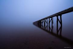 Cornwallis Wharf Fog (hakannedjat) Tags: fog auckland cornwalliswharf wharf jetty pier newzealand nz nzmustdo sonynz sonya7rii a7rii zeiss
