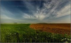 Ordinary Moravian landscape (piontrhouseselski) Tags: cz south moravia field morning sky