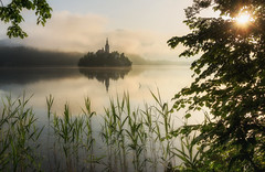 Lake Bled (Dreamy Pixel) Tags: alpine alps amazing architecture autumn background beautiful bled blue castle catholic church city cloud colorful europe fall fog foggy forest gorenjska hill idyllic island julian lake landmark landscape mist misty morning mountain nature outdoor reflection scenic sky slovenia sun sunrise tourism tower travel tree vacation view viewpoint water white winter ngc