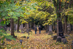 autumn is coming....soon (Harry Pammer) Tags: wien vienna zentralfriedhof central cementry colours colors colorful bunt leaves leafs blätter herbst autumn people menschen