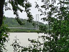 Alaska Pipeline (AnetteWho) Tags: alaska green tree water bridge clouds river badweather melancholic plant