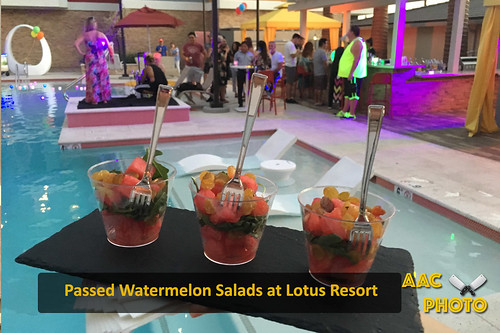 """Watermelon Salad Cups • <a style=""""font-size:0.8em;"""" href=""""http://www.flickr.com/photos/159796538@N03/30272578798/"""" target=""""_blank"""">View on Flickr</a>"""