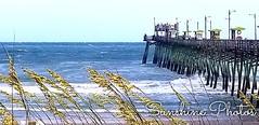 """The answer, my friend, is blowin' in the wind."" - Bob Dylan (jolynn_) Tags: beach coastal ocean waves pier northcarolina"