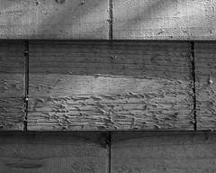 IMGP3504 (agianelo) Tags: wood siding shingle coarse grain texture abstract bw bn blackandwhite