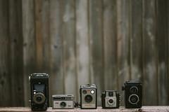The Usual Suspects... (Jess Feldon) Tags: happyfencefriday fencefriday fence hff cameracollection vintagecameras jessfeldon lookslikefilm dof lineup