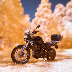 Tiger (Edd Noble) Tags: bokeh bokehpanorama bokehpano brenizermethod panoramic motorbike motorcycle gothenburg göteborg sweden scandinavia infrared infraredphotography colourinfrared falsecolour microsoftice sonya7 canonfd85mmf12