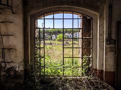 IMG_4131 (original-sam) Tags: sugarfactory cecina italy abandonedplace iphonex architecture industry lostplace urbanexploration urbex