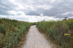 Pegwell Bay Country Park 1668 (Kent Country Parks) Tags: summer autumn spring pegwellbay country countryside kentcountryparks kent