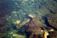 Spokane River Bottom (BP3811) Tags: 2018 bicycledwheel july litter spokane spokaneriver underwater rim rocks washington