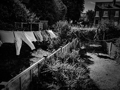 rnor80952.jpg (Robert Norbury) Tags: fuckit somearelandscapessomearenot icantbearsedkeywording fineartphotography blackandwhite photographer itdoesntmatterwhattheyarepicturesoftheyarejustpictures itdoesntmatterwhattheyarepicturesoftheyarejustpictur