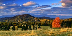 Strelnicka Bukovina (stano szenczi) Tags: slovakia polana strelnickabukovina lubietovskyvepor autumn tree red evening sunset fall