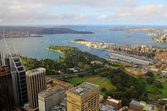 View From Centrepoint Tower, Sydney, September 13th 2014 (Southsea_Matt) Tags: australia newsouthwales september 2014 spring canon 60d centrepoint sydneytower view centennialpark pottspoint sydneyharbour