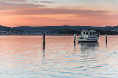 Shades of Pink and Boat on the Bay Waterscape (Merrillie) Tags: daybreak woywoy landscape nature australia foreshore newsouthwales earlymorning nsw brisbanewater morning dawn coastal water sky waterscape sunrise centralcoast bay outdoors
