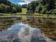 Bath Prior Park Lakes 2018 08 02 #6 (Gareth Lovering Photography 5,000,061) Tags: bath prior park nationaltrust gardens palladian bridge serpentine lakes viewpoint england olympus penf 14150mm 918mm garethloveringphotography