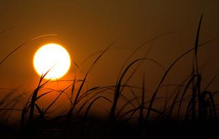 Delaware Bay Sunset
