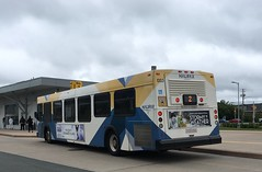 Good Till December! (The Halifax Transit Fan!) Tags: publictransit canadiantransit canadianpublictransit hfxtransitroute2 burnsidebus newflyerd40lf hfxtransit1003 hfxtransit halifaxtransit