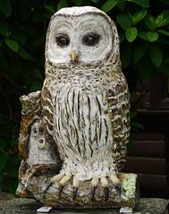Lady of the Lake (dr.tspencer) Tags: tamron16300mm coxsackieowls greenecounty hudsonvalley athensny fiberglasspublicart publicart owl