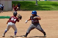 Summer League U12 Baseball (shinnygogo) Tags: baseball summerleague southbay losangeles kids 2018 summer game fieldballpark carson torrance youth tll
