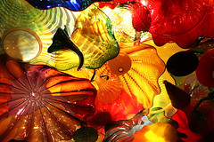 Fragile Flowers (studioferullo) Tags: abstract architecture art beauty bright colorful colourful colors colours contrast dark design detail edge light perspective pattern pretty study sunlight sunshine texture tone world chihuly glass lines curve sculpture seattle washington