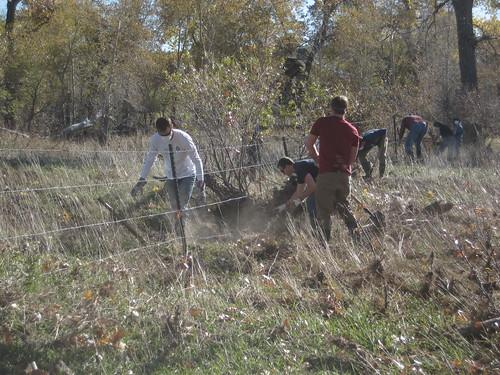 Photo - Boulder Brands Agricultural Project