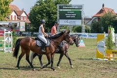 A9909148_s (AndiP66) Tags: springen langenthal 2018 5august2018 august pferd horse schweiz switzerland kantonbern cantonberne concours wettbewerb horsejumping equestrian sports springreiten pferdespringen pferdesport sport sony alpha sonyalpha 99markii 99ii 99m2 a99ii ilca99m2 slta99ii sony70400mm f456 sony70400mmf456gssmii sal70400g2 amount andreaspeters