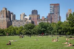 Central Park Sun Tan (Alex E. Proimos) Tags: naked bikini girl upskirt new york city nyc summer heat hot blue sky butt bum buns but ass gstring g string heatwave